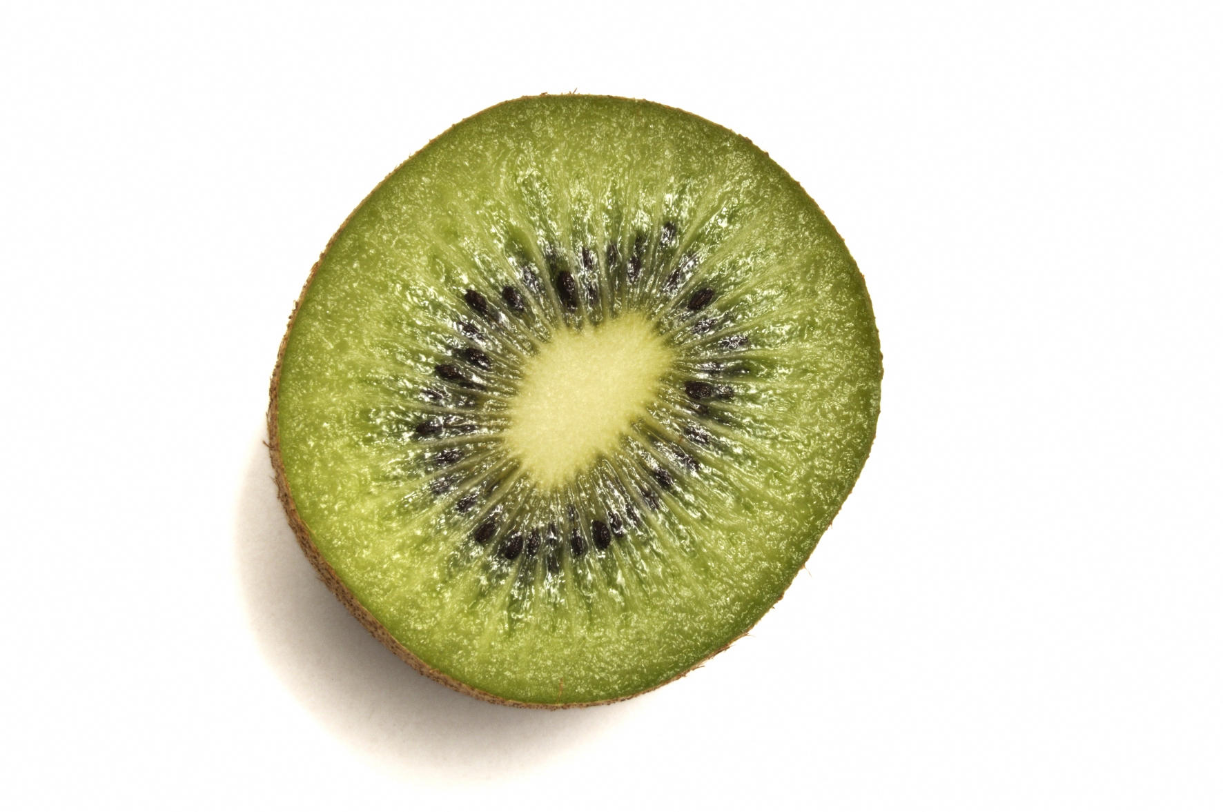 Kiwi cut #3
