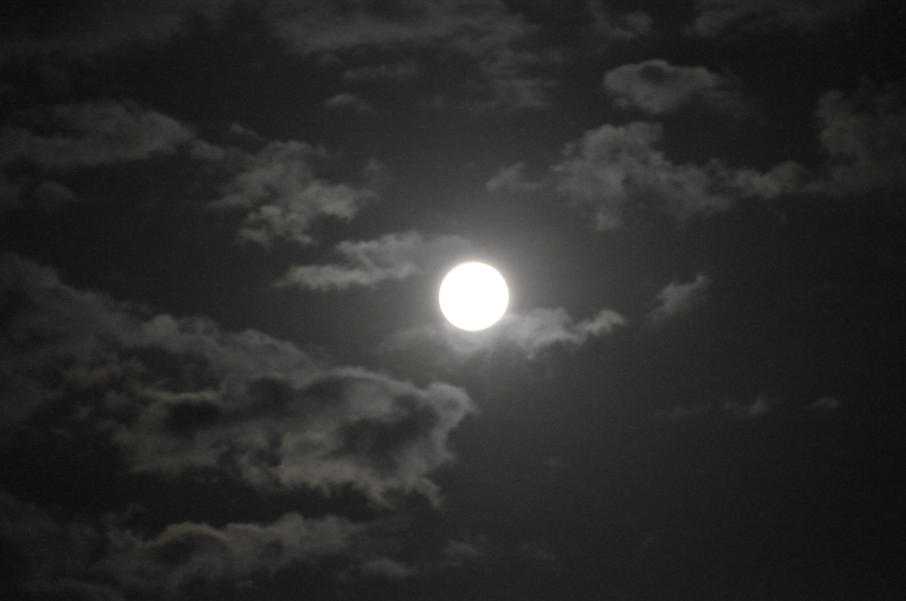 La Lune se fait remarquer ! dans A voir ! Pleine_lune__1_4b6bee1c48799