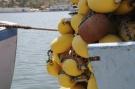 Filet de pêche #5