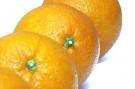 Oranges #4