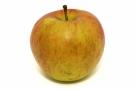 Pomme bicolore #5