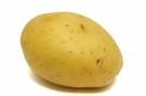 Pomme de terre #7
