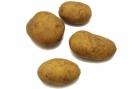 Pommes de terre #4