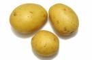 Pommes de terre #8