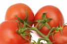Tomates #5