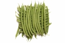 Haricots verts #13