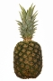Ananas #4